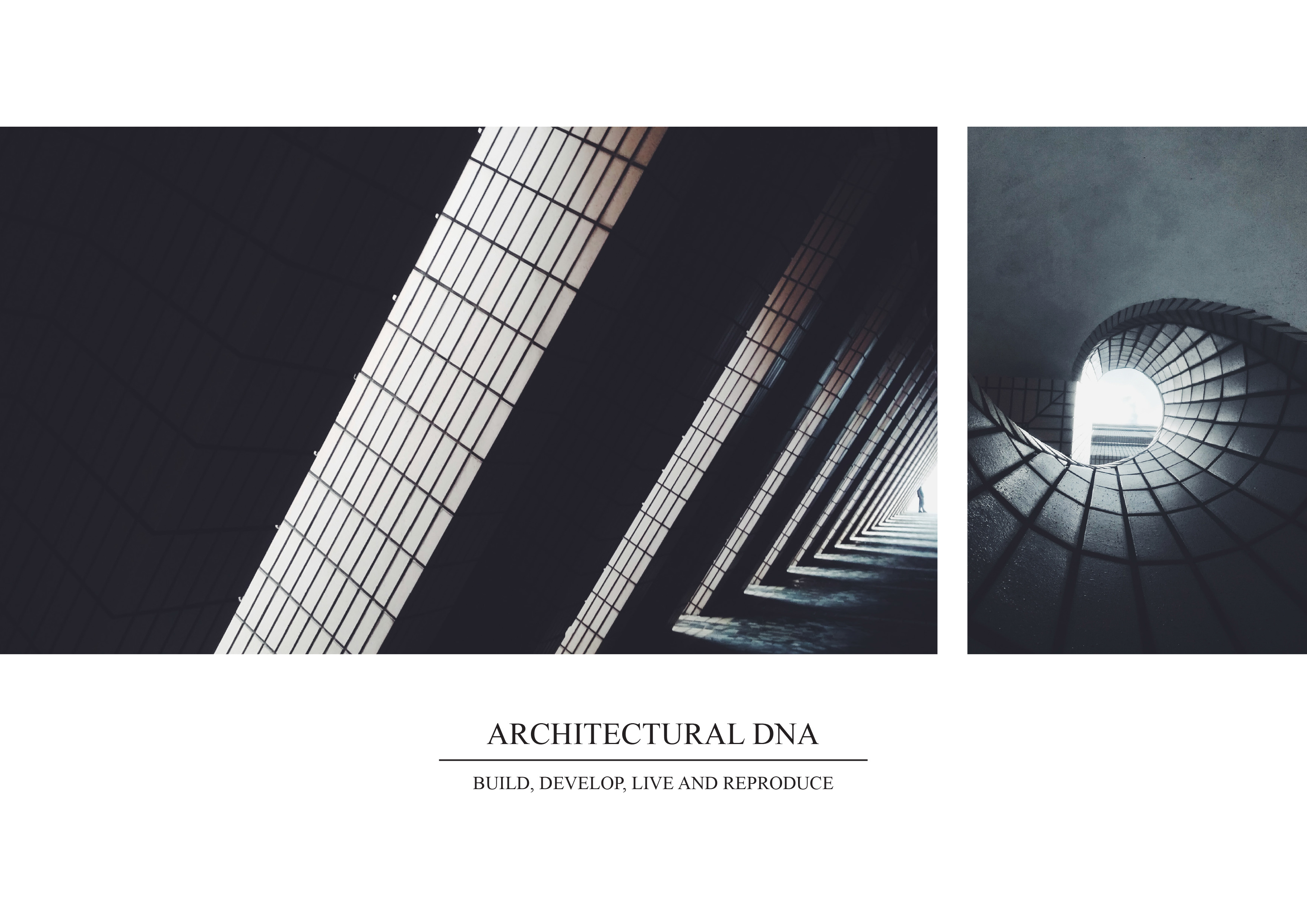 00_Architectural DNA_Montage